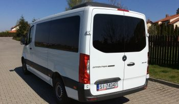 Mercedes Sprinter, 9 osób, bez haka full